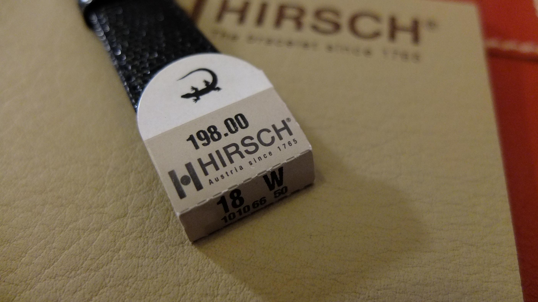 Lizard Hirsch